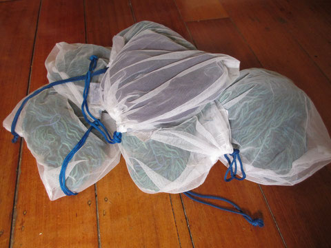 A pile of white re-usable produce bags, each with a skein of yarn inside.