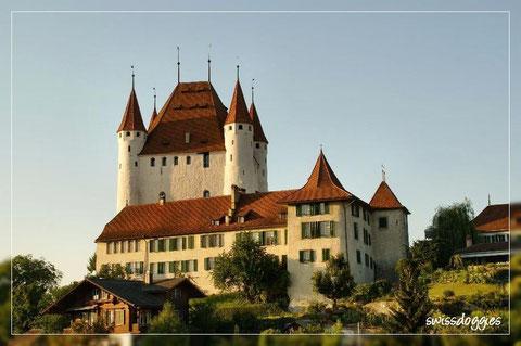 Blick vom Riesenrad auf das Schloss Thun.