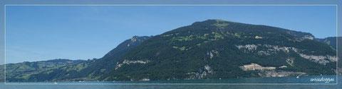 Entlang dem Thunersee, mit Blick auf's Niederhorn und den Beatenberg...