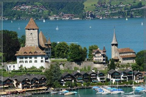 Schloss Spiez mit Kirche und Hafen