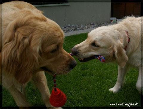 Roxy und mit seiner Freundin Joya
