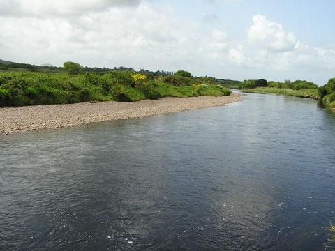"""River Inny - ein klassischer """"spate river"""". Die Sommergrilse waren leider noch nicht da."""