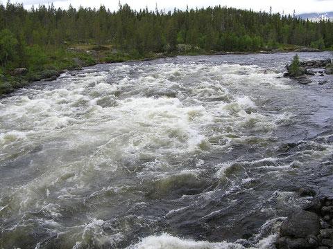Femundsmarka Nationalpark mit der Femundselva, später heißt der Fluss Trysil und in Schweden dann Klara.