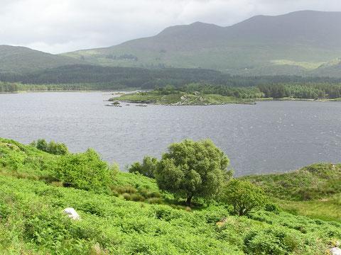 Lough Currane - soll einer der besten Seen zum Fischen auf Meerforelle und Lachs sein. In Verbindung mit dem River Cummeragh und den oberhalb befindlichen Loughs Namona, Iskanamacteery, Derriana und Cloonlaghlin.