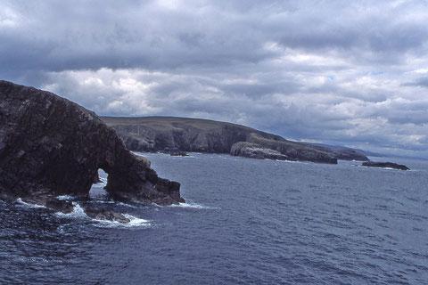 paysage de mer(strathy point)