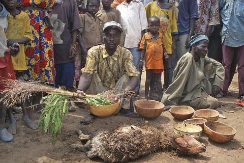 le sacrifice animal est souvent présent en Afrique