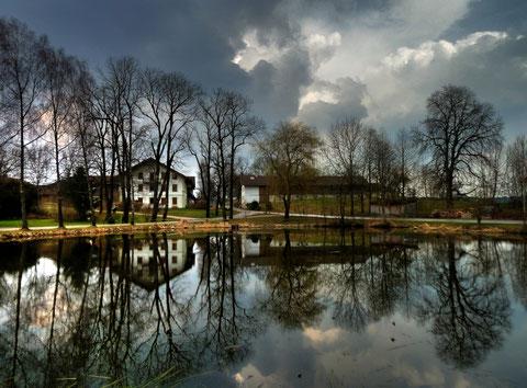 Der Teich in Eulenschwang