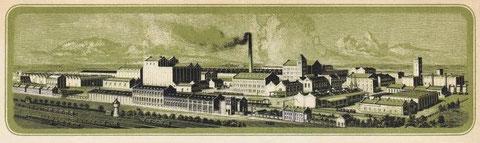 Rheinische Linoleumwerke Bedburg AG: Firmenansicht von einer Rechnung aus den 20-er Jahren