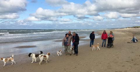 und noch mehr Kromis - erster VRK Spaziergang in Dänemark! ;-)