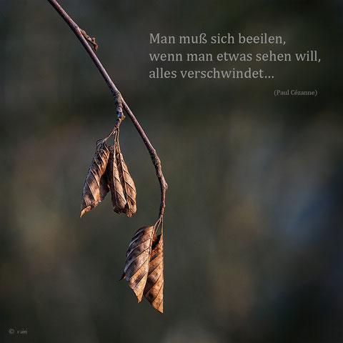 Bild von Rainer Posert, danke dafür