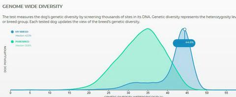 44,6% an genetischer Diversität