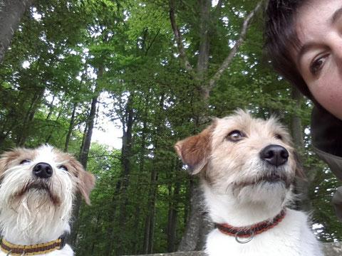 an den Dreier-Selfies üben wir noch... ;-)