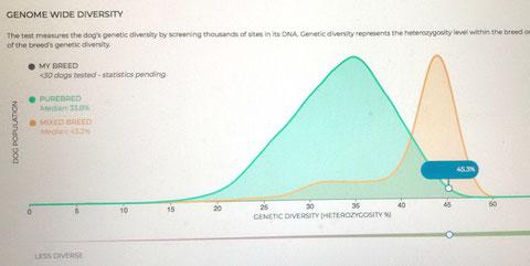 45,3% an genetischer Diversität