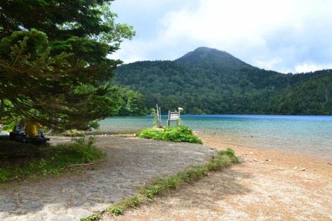 この池を眺めながら早めのお昼でした