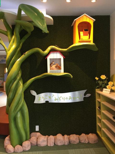 入り口を入ると、そこには壁に高品質人工芝が貼られ、楽しい動物の家が!!ワクワクがとまらない!!