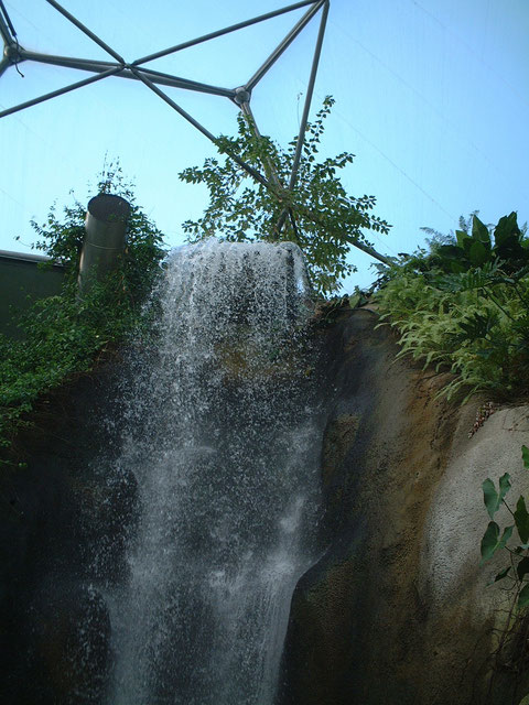 バイオームの中にある滝。