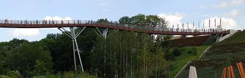 Drachenschwanz-Holzbrücke bei Ronneburg (Entwurf: R.J. Dietrich)