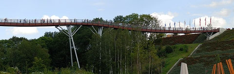 Drachenschwanz-Holzbrücke bei Ronneburg (Entwurf: R.J. Dietrich) [Foto: André Karwath aka Aka]