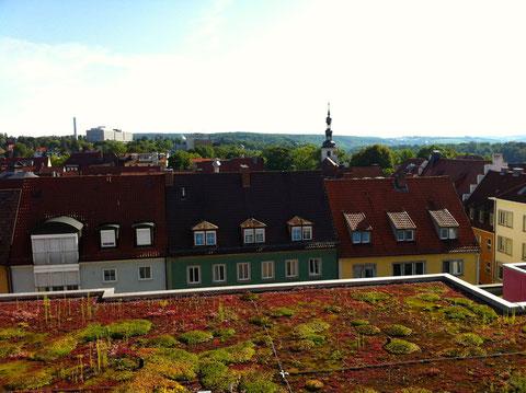 Blick von der Dachterrasse des Rathaus auf den Stadtteil Zürch mit der St. Salvatorkirche