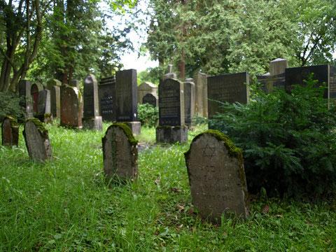 Der Friedhof der israelitischen Kultusgemeinde im Hauptfriedhof Schweinfurt (seit 1874)