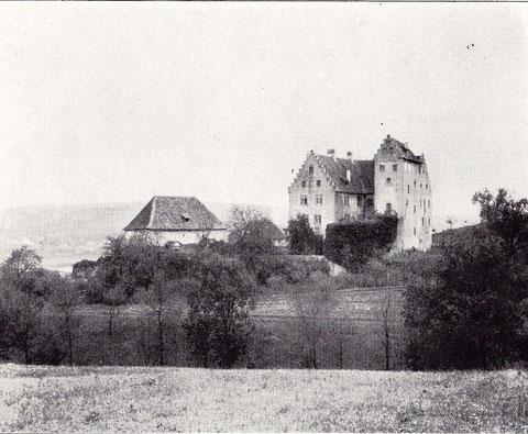 Schloss Klingenberg - war früher fürstbischöflich, später Privatbesitz