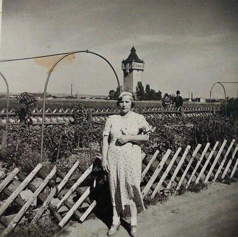 In den 1940ern