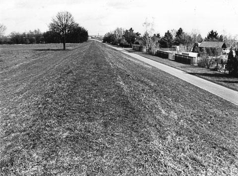 Das Maintal vor seiner Bebauung 29.03.1995