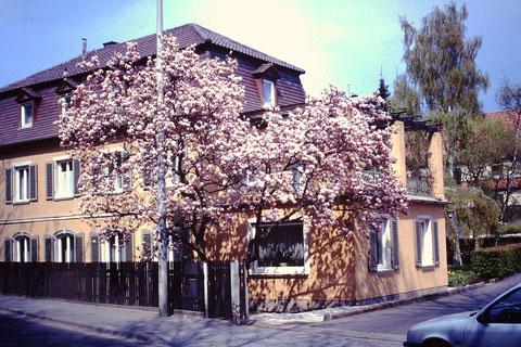 Wohnhaus Trinklein 1991