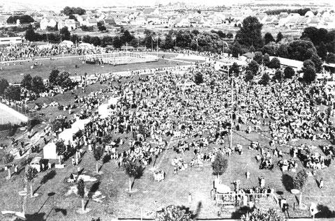 Wiesenfest auf den SKF Erholungsanlagen am Sennfelder See um 1960. Bild © SKF Group
