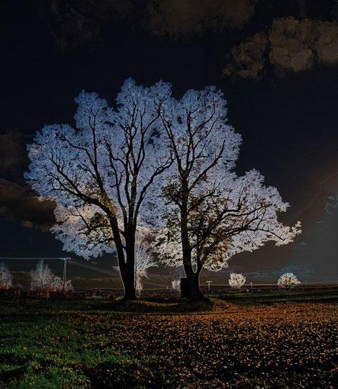 """""""Seelenvaddernacht"""" - Foto von Jürgen Kohl"""