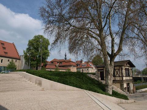 Blick von der Mainlände auf die Altstadt