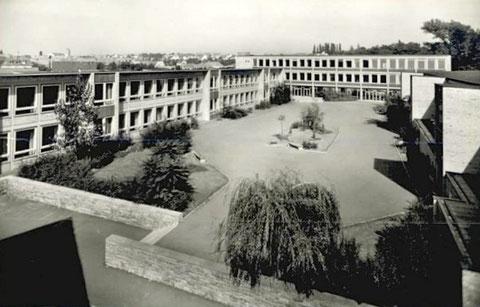 Auenschule