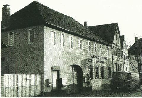 Schwarzer Adler Gochsheim