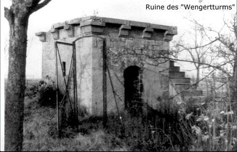 """Die Ruine vor dem endgültigen Abriss - vielleicht auch die einstige """"Beerenhütte"""""""