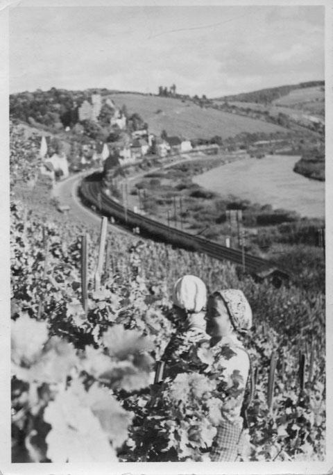 Weinlese ca. 1943 Nähe Ludwigsbrunnen - Danke an Dieter Zembsch