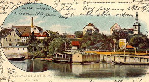 Blick vom Main - rechts die St. Salvator-Kirche - ca. 1905