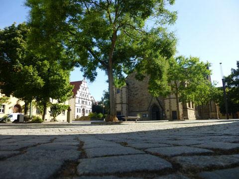 Altes Gymnasium am Martin-Luther-Platz mit Johanniskirche
