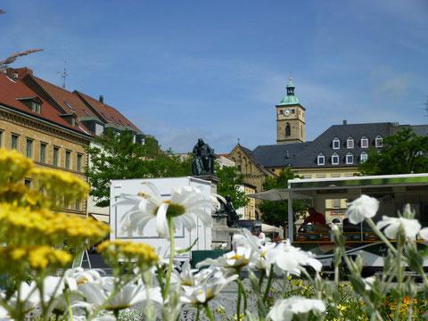 Marktplatz 2013