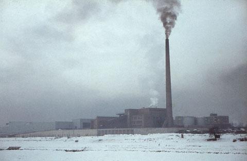 Januar 1964 - Zugefrorener Main am Heizkraftwerk