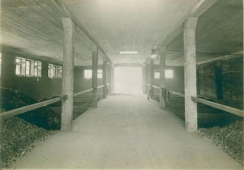 Kohlenlager 1910