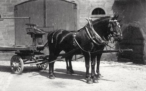 Hier ein Foto aus der Vorkriegszeit, als die Brauerei Hagenmeyer die Keller als Eiskeller nutzte (Eingang rechts)