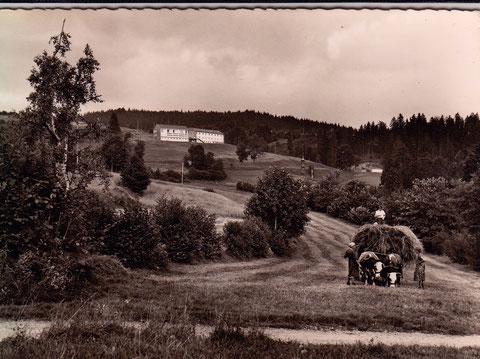 """Kindererholungsstätte """"Georg-Schäfer-Heim"""" Häusern/Südschwarzwald"""