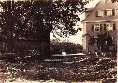 1925 -  Haus rechts das Hessenhaus, gleich daneben war die Hühnerfarm Schmidt. Das Gebäude auf der linken Seite ist die Scheune, davor eine Landmaschine vom Bauer Dürr. In dem Anwesen war auch ein Backofen integriert. Danke für die Infos an Rudi Christ!