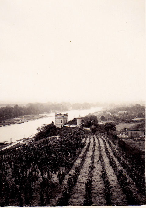 1934 - Blick vom Leinritt auf die Peterstirn