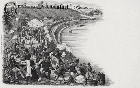 Weinlese Nähe der Peterstirn - Anfang 20. Jahrhundert