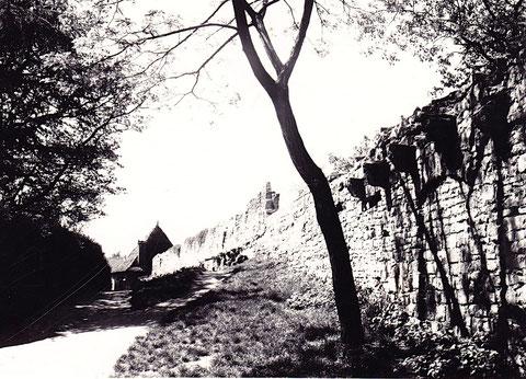 Am Höpperle - mit Wohnturm im Hintergrund