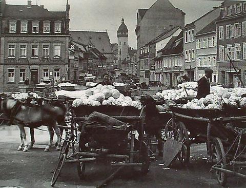 Weißkohlmarkt am Roßmarkt 1907