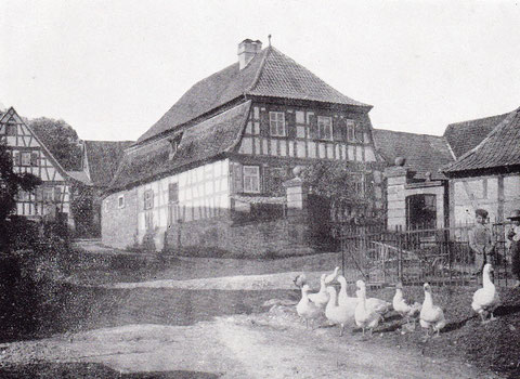 Straßenfoto aus dem Jahre 1910 mit Haus Nr. 35