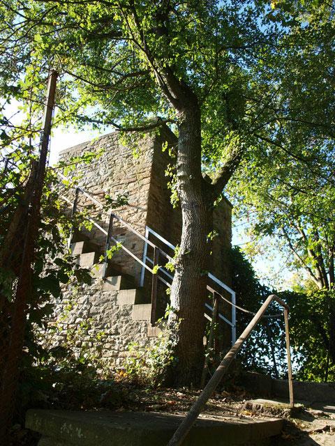 Der Beerenhüterturm oberhalb der Peterstirn