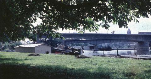Am Main mit Blick auf die Maxbrücke um 1960